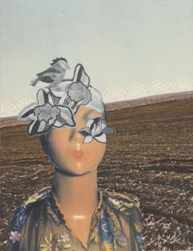Shannon Morris, artfulcleveland.org